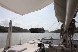 Next day cruising through Gatun Lake.