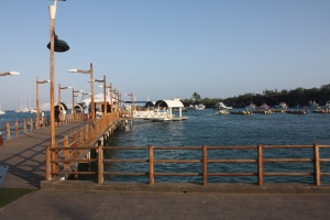 Puerto Ayora dock & water taxis.