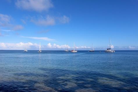 Next morning the sun shines on our little fleet.