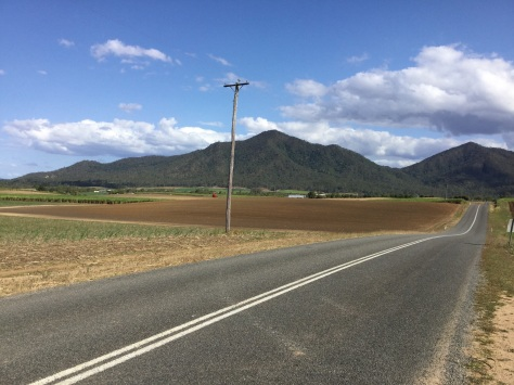Sugar cane field for miles and miles inland from Mackay.