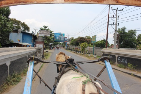 Many forms of public transportation in Lombok