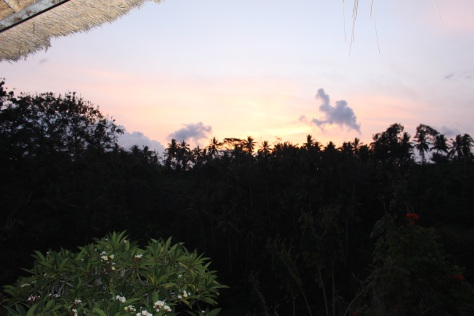 View from our villa in Ubud, Bali
