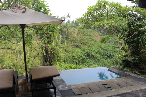 Our private jacuzzi/pool, overlooking a ravine, and we can hear the rush of the river below