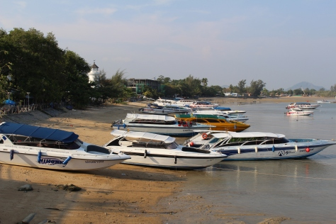 A small sampling of the tour boats