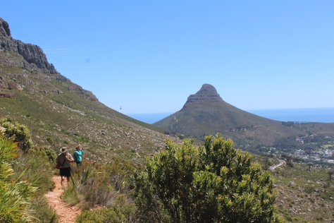 Lion's Head in the background; another climb for another day.