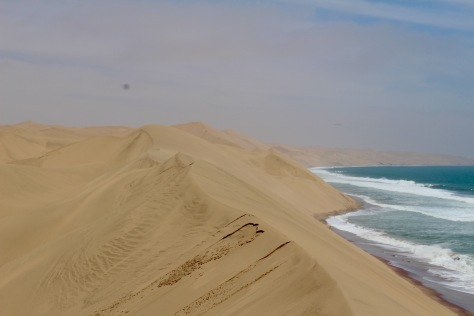 They say this is the only place in the world where the dunes of the desert extend right to the ocean!