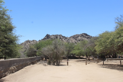 ...to this oasis (literally; there is water here), where we stopped for lunch.